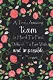 A Truly Amazing Team - Journal & Notebook: Funny team appreciation gifts for employees | Thank you gifts for team members, End of the year gifts ideas | Gag gifts for women, men, coworkers, friends