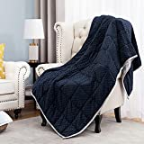 Angelhood Weighted Blanket Adult (15 lbs, 48''x72'', Twin Full Size Bed),Oeko-Tex Certified Minky Weighted Blanket Warm Luxury,Heavy Weighted Blanket with Premium Glass Beads