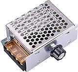 Yeeco AC 110V 4000W SCR Voltage Regulator...