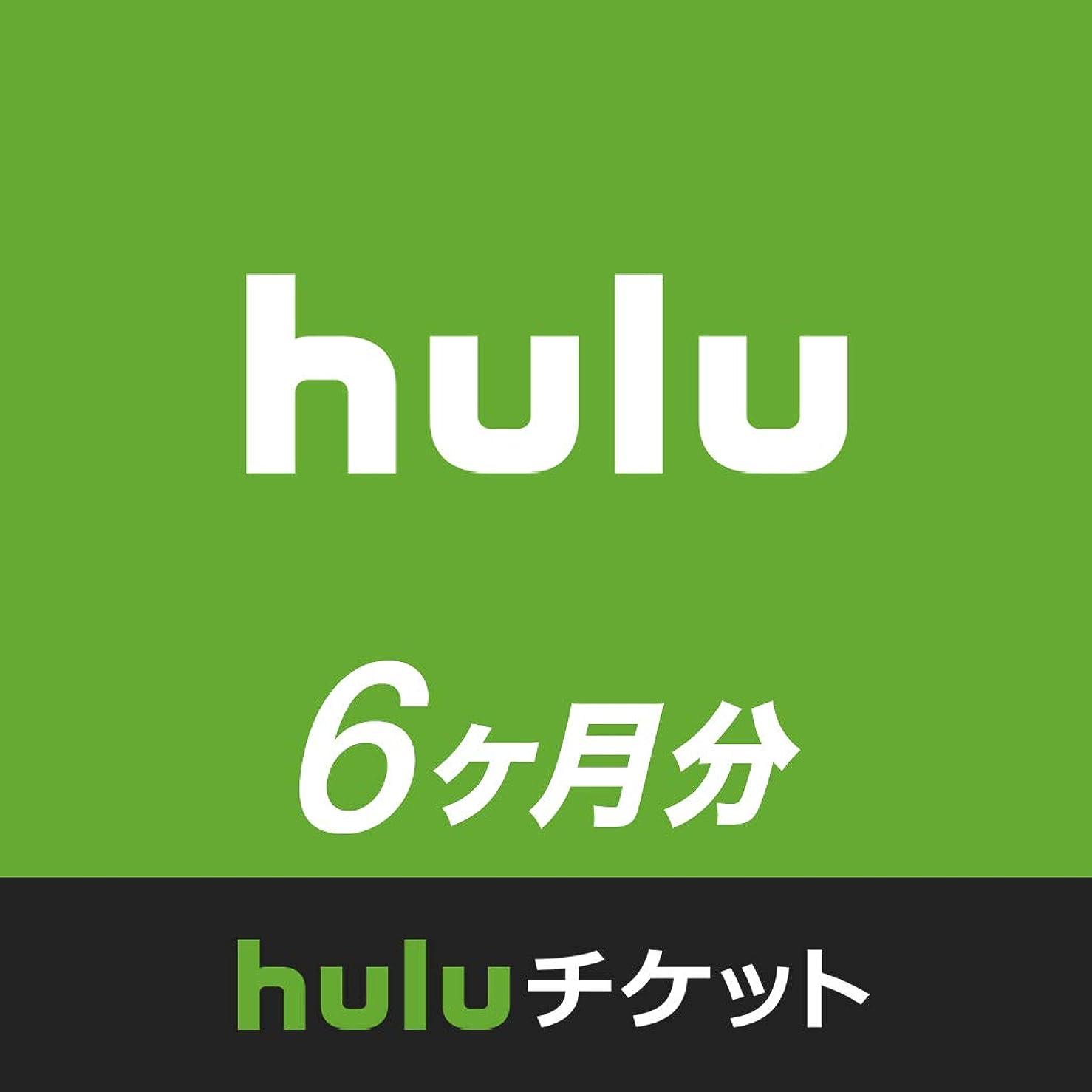 宅配便を除く進捗Huluチケット (6ヵ月利用権)|オンラインコード版