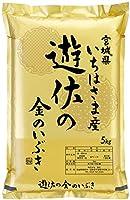 【玄米食用】令和2年宮城県一迫産 遊佐の金のいぶき 5kg