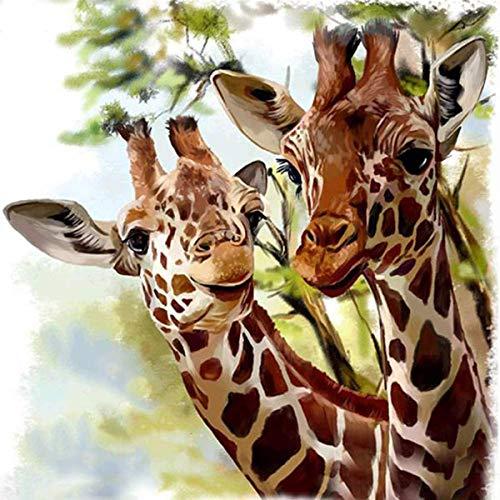 giraffe malen kinder
