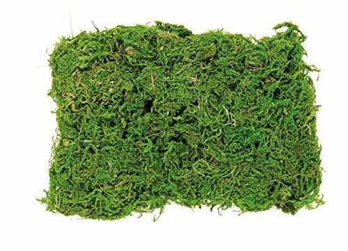 Glorex Bolsa Musgo de 50 g, Multicolor, 20 x 14 x 5 cm