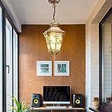 LI Xiang Terrasse Außen Kronleuchter aus Aluminiumdruckguss Glas Bronze Deckenpendelleuchte Europäischen Villa Garten-Hof-Pavillon Regenschutz Droplight Outdoor Wasserdicht IP55 (Größe:...