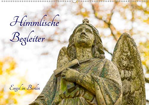 Himmlische Begleiter (Wandkalender 2021 DIN A2 quer)