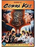 Cobra Kai Seasons 1 To 2 [Edizione: Regno Unito]