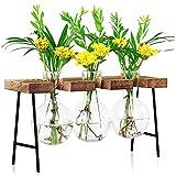 LESES Estación de propagación de plantas, jarrón de vidrio de escritorio con soporte de madera, macetero para plantas hidropónicas, oficina, decoración del hogar - florero de 3 bombillas
