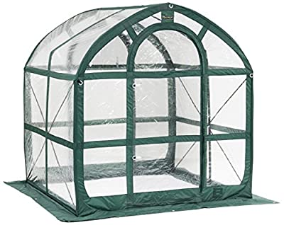 Flower House SpringHouse Greenhouse