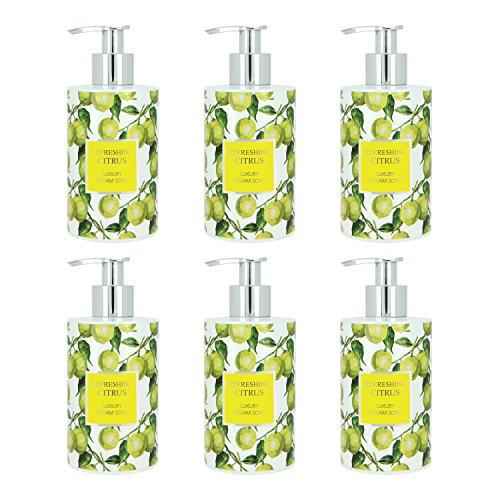 VIVIAN GRAY 1012 'Refreshing Citrus' Seifenspender mit Creme Seife, gelb/grün (6er Pack)