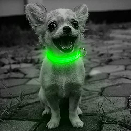 Domi Led Dog Collar, USB Rechargeable Adjustable Lighted Collar for Small Dogs and Cats, Reflective Dog Collar Glow in Dark Keep Your Pet Visible and Safe(XS, Green)