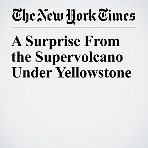 A Surprise From the Supervolcano Under Yellowstone copertina
