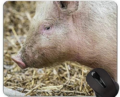 Baby-Schwein-Mausunterlage-Matte, Säugetier-Mausunterlage-Matte