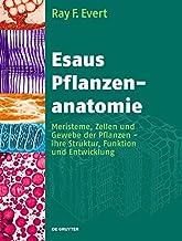Esaus Pflanzenanatomie: Meristeme, Zellen und Gewebe der Pflanzen - ihre Struktur, Funktion und Entwicklung (German Edition)