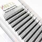 Premade Volume Eyelash Extensions 3D Volume Lashes 0.10 C Curl Long Stem 13mm Russian Clusters (13mm)
