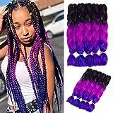 5 Packs Jumbo Box Braid Synthetic Braiding Hair Extensions Multiple Tone Crochet Twist Braids Hair for Braiding (Black-Purle Red-Violet, 24 Inch)