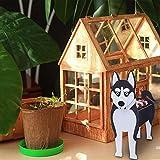 Macetero de madera con forma de animal para perros, maceta decorativa en 3D, diseño de flores, para el hogar, invernadero, jardín, macetas decorativas para perros, macetas de jardín