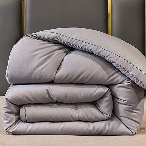 Meet Beauty Acuerdo de Fibra de Soja de la Colcha de algodón de Plumas, se Puede Utilizar en casa o en el Hotel | Suave | hipoalergénico-Gris_220x240cm-4.3kgwinter edredón