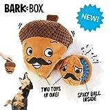 BarkBox Interactive 2-in-1 Dog Toy