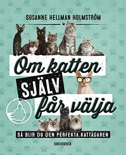 susanne holmström netonnet