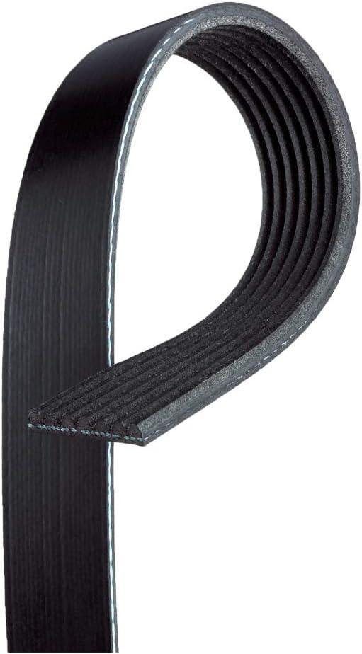 ACDelco GM Original Equipment Super Ranking TOP6 intense SALE Serpentine 12634319 V-Ribbed Belt