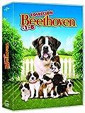 Beethoven 1-8 [DVD]