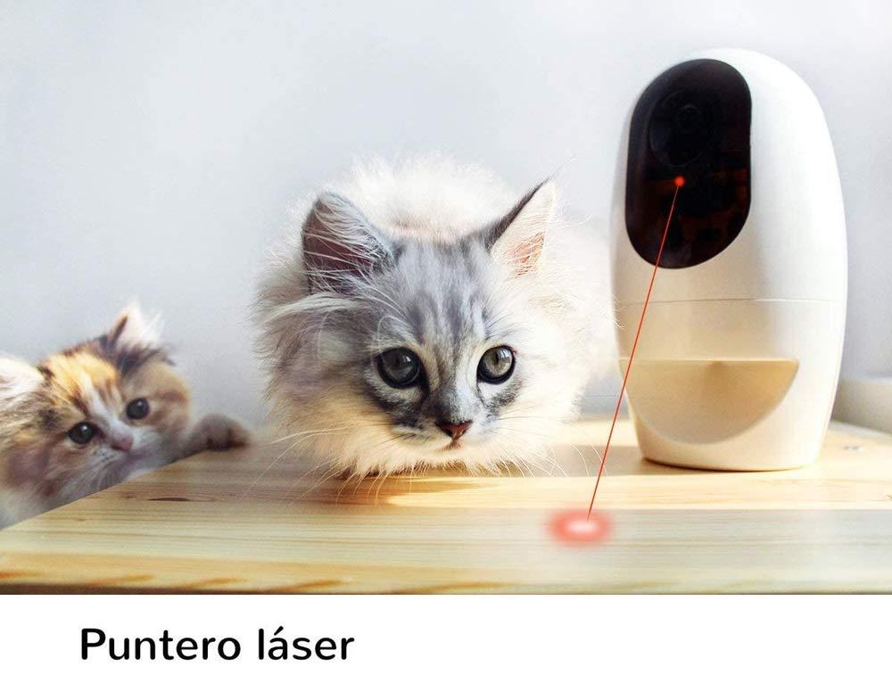 HWZQHJY Cámara Full HD WiFi Mascotas con 2-Way-Audio, dispensador Tratar con el Perro y el Gato Puntero láser: Amazon.es: Productos para mascotas