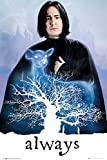 Harry Potter and The Deathly Hallows - Movie Poster (Professor Snape - Always! - Doe Patronus) (Size: 24 inches x 36 inches)