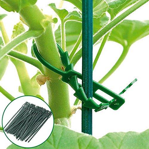 Homclo Lot de 50 attache-câbles réutilisables en plastique 18 cm