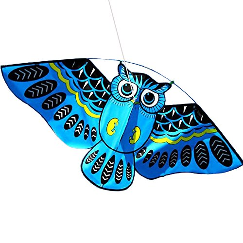 3D Owl Kite Ids Toy Fun Outdoor Flying Activity Game Children with Tail BU, Education, Toys and Hobbies (Bule)