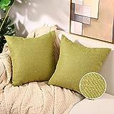 Basic Model Juego de 2 fundas de cojín de algodón y cáñamo, monocolor, decorativas, arpillera, cuadradas, para sofá, salón, verde, 40 x 40 cm