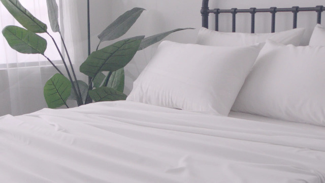SONORO KATE Bed Sheets Set Sheets Microfiber Super Soft 1800 Thread Count Luxury Egyptian Sheets 16-Inch Deep Pocket Wrinkle Fade and Hypoallergenic - 4 Piece (Twin XL, White)