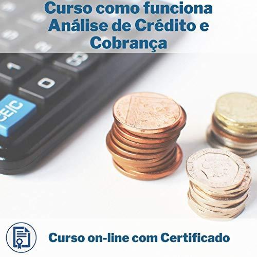 Curso Online em videoaula de como funciona Análise de Crédito e Cobrança com Certificado