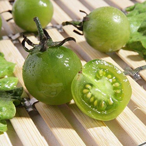 Fruits et légumes semences préféré cerise vert graines de tomates peuvent être mis en pot package couleur de 2 g d'environ 200 grains