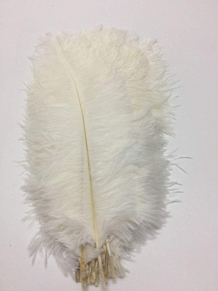 CENFRY 100pcs Ostrich Feathers 12-14inch for Wedding Sales for sale Max 51% OFF Cent Plumes