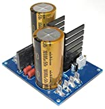 Audio Grade DC Power Supply Kit, 200W, Fixed or Variable Voltage