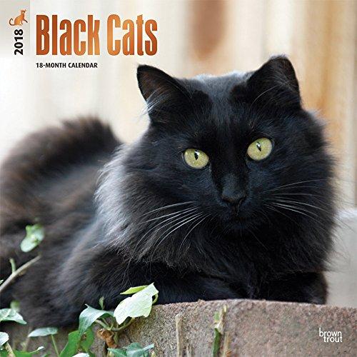 Black Cats - Schwarze Katzen 2018 - 18-Monatskalender: Original BrownTrout-Kalender [Mehrsprachig] [