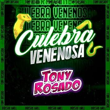 Culebra Venenosa
