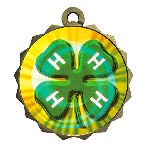 Express Medals 4H Gold Medal Trophy Award with Neck Ribbon D214-MY423 5PK