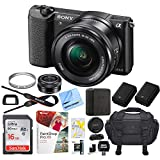 Sony Alpha a5100 24.3MP HD 1080p Mirrorless Digital Camera with 16-50mm Lens Black Bundle with 16GB Memory Card, Camera Bag, Paintshop Pro 2018, 40.5mm Filter and Camera Battery