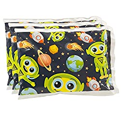 bentology lunch box for kids lunchbox icepacks kids school lunch ice pack lunchbox lunch box penguin