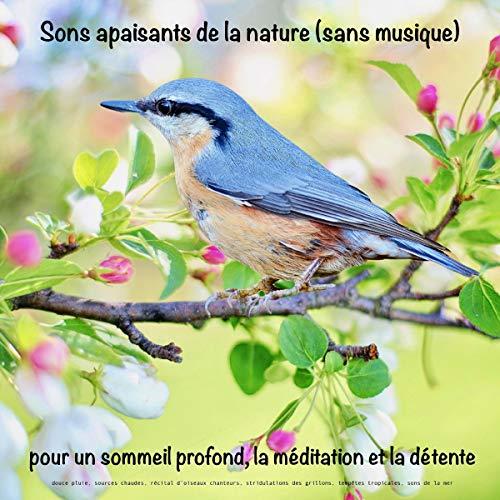 Couverture de Sons apaisants de la nature (sans musique) pour un sommeil profond, la méditation et la détente