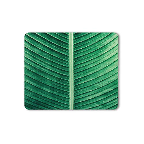 Moslion Tropical Green Leaves Mouse Pad Summer Natural Plant Outdoor Vibrant Banana Leaves Gaming Mouse Mat Non-Slip Rubber Base Thick Mousepad for Laptop Computer PC 9.5x7.9 Inch