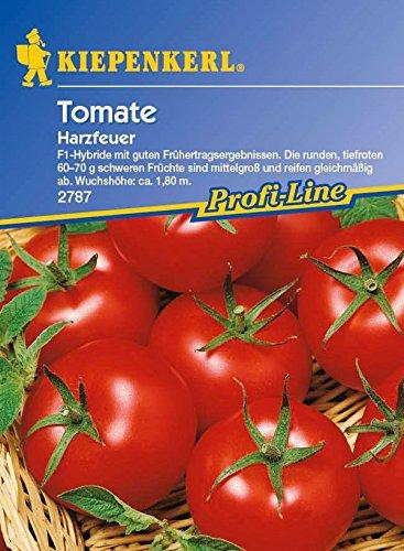 Kiepenkerl, Tomaten Harzfeuer