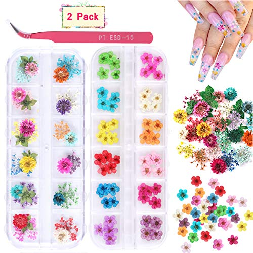2 Boxes Dried Flowers for Nail Art, KISSBUTY 24 Colors Dry Flowers Mini Real Natural Flowers Nail Art Supplies 3D Applique Nail Decoration Sticker for Tips Manicure Decor (Gypsophila Flowers Daffodil)