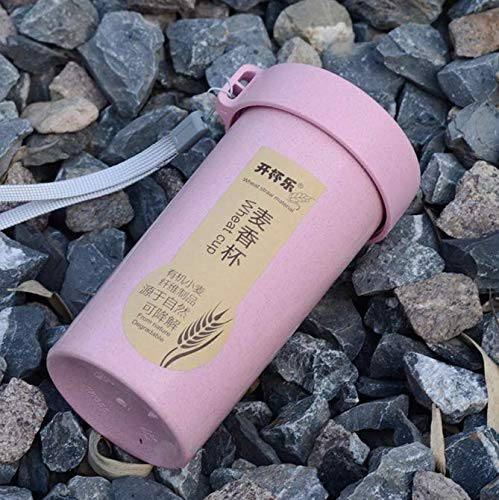 FEJK Wheat Straw Portable Water Bottle Drink Container Cup Mug Sports Fitness Protein Shaker Milk Shake Bottle With Cup Cover 350Ml
