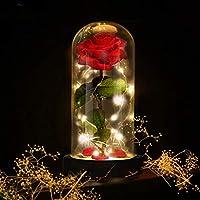 E-MANIS Kit de Rosas,La Bella y La Bestia Rosa Encantada,Elegante Cúpula de Cristal con Base Pino Luces LED,Beauty and...