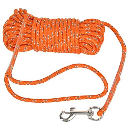 10M Schleppleine Reflektierend Schleppleine für Hunde, Schleppleine Trainingsleine Ausbildungsleine für Kleine Hunde, Hundelaufleine Hundeleine mit Handschlaufe für Welpen und Kleine Hunde - Orange