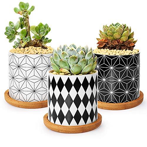 Ertisa 3 Pcs Succulent Pot, 7.5CM Simple Geometric Ceramic Cactus Plant Pot Mini Flower Pots/Container/Planter with Bamboo Tray for Home & Office Desktop Windowsill Decor