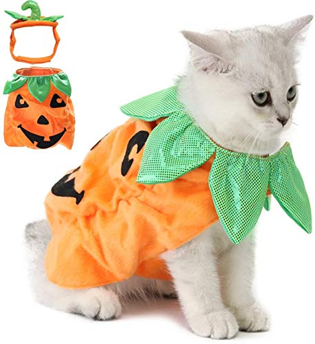 Xitouer Disfraz de Halloween de Gatos, Ropa de Calabaza de Vestir de Halloween de Gato Diseo Divertido para Mascotas Traje de Gato de Halloween con Cabezal de Calabaza para Gatos y Cachorro
