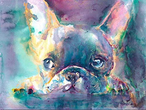 DIY Paint by Numbers for Adults Abstract Colorful French Bulldog Digital Oil Canvas Painting Kits for Adults Children Kids Birthday Wedding New Accommodation Decorations Gifts